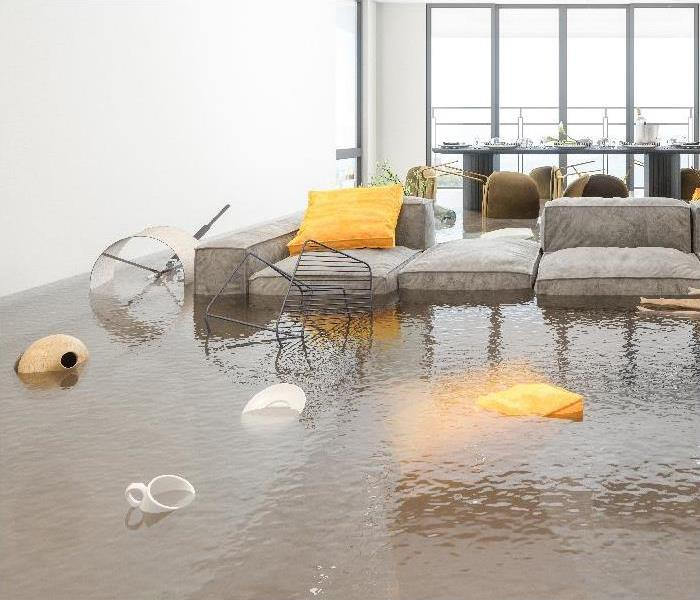 Living room and Dining Room Flooded