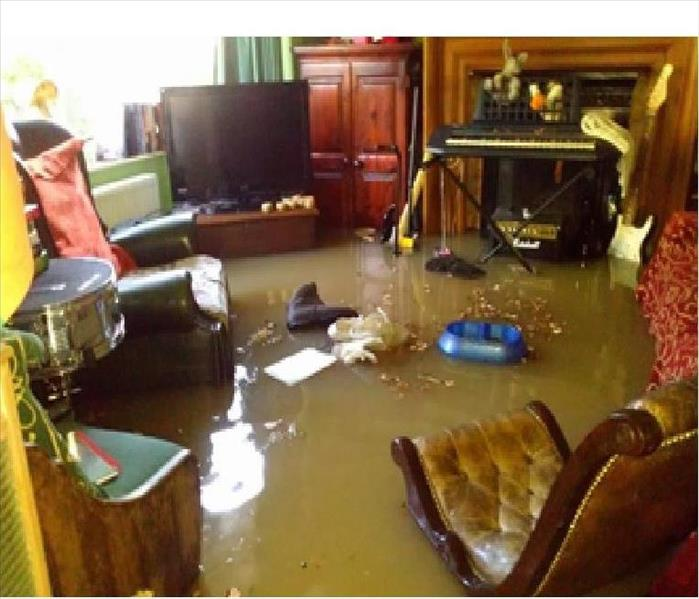 Water Damage Learning More About Your Water Loss